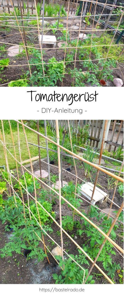 Hier erfährst Du wie Du ein Tomatengerüst ganz einfach selber bauen kannst.